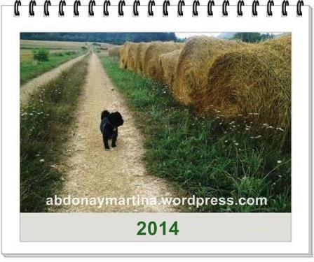 20140102_calendario